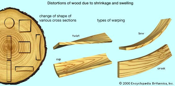 Wood Shrinkage Crown Mouldings